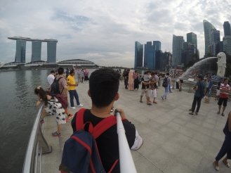 Raffles City (Merlion)